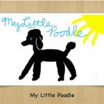 My Story: criando e publicando histórias no iPad